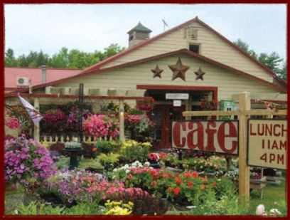The Apple Barrel: Be sure to check out the cafe! Schoharie, NY: Favorite Places, Random Things, Girt Shop, Country Stores, Barrel Cafe, Apple Barrel, Barrel Country
