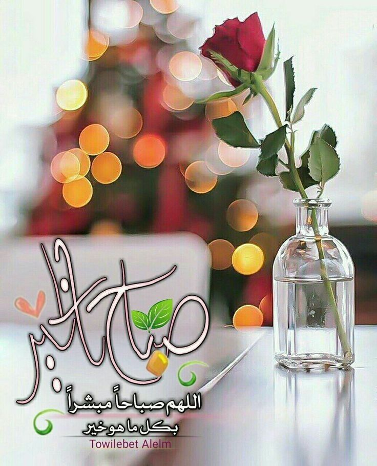 Pin By سكينة الحبشي On منوعات Good Morning Arabic Morning Greeting Good Morning Messages