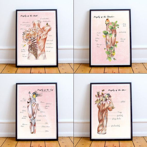 Gift For Massage Therapist Floral Anatomy Massage Room Art Etsy Massage Room Massage Studio Massage Room Decor