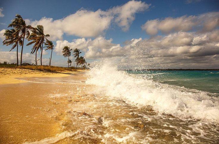 -  ) Солнечный берег Карибского моря! С погодой не очень повезло в тот день, купаться сложно, ветер холодный! Зато для фоток самое то!  -  #wind #surf #palmtrees #Caribs #sea #пальмы #карибы #havana #sustainability #travelphoto #naturephotography #путешествие #traveldiaries #lonelyplanet #берег #travelphotography #lookway_ru #куба #рассвет #пляж #пейзаж #шторм #багамы #cuba #sunset #bolivar #paradise #travelpics #traveller #worldtravelpics
