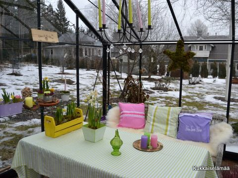 Our vernal greenhouse 2014