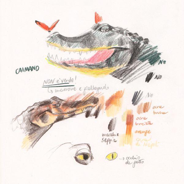 """Caiman sketches for """"Ciacio in Amazonia"""" picture book"""