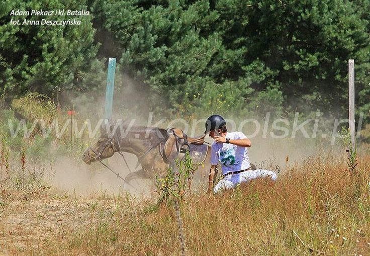 V Mazowiecki Weekend z Hucułem, Chmielewo 20-21 lipca. Ścieżka huculska fot. A.Deszczyńska Portal Koń Polski | Hortpress