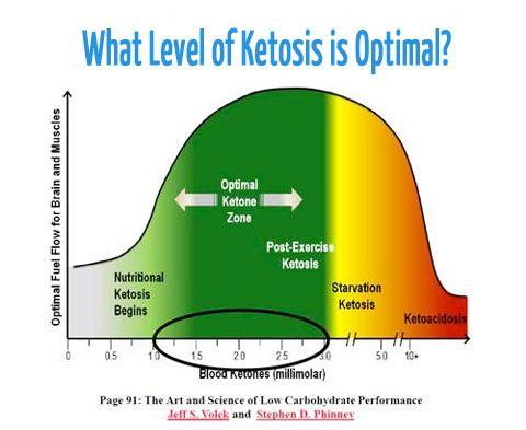 Explore Our Latest PostsKetosis & Measuring Ketones