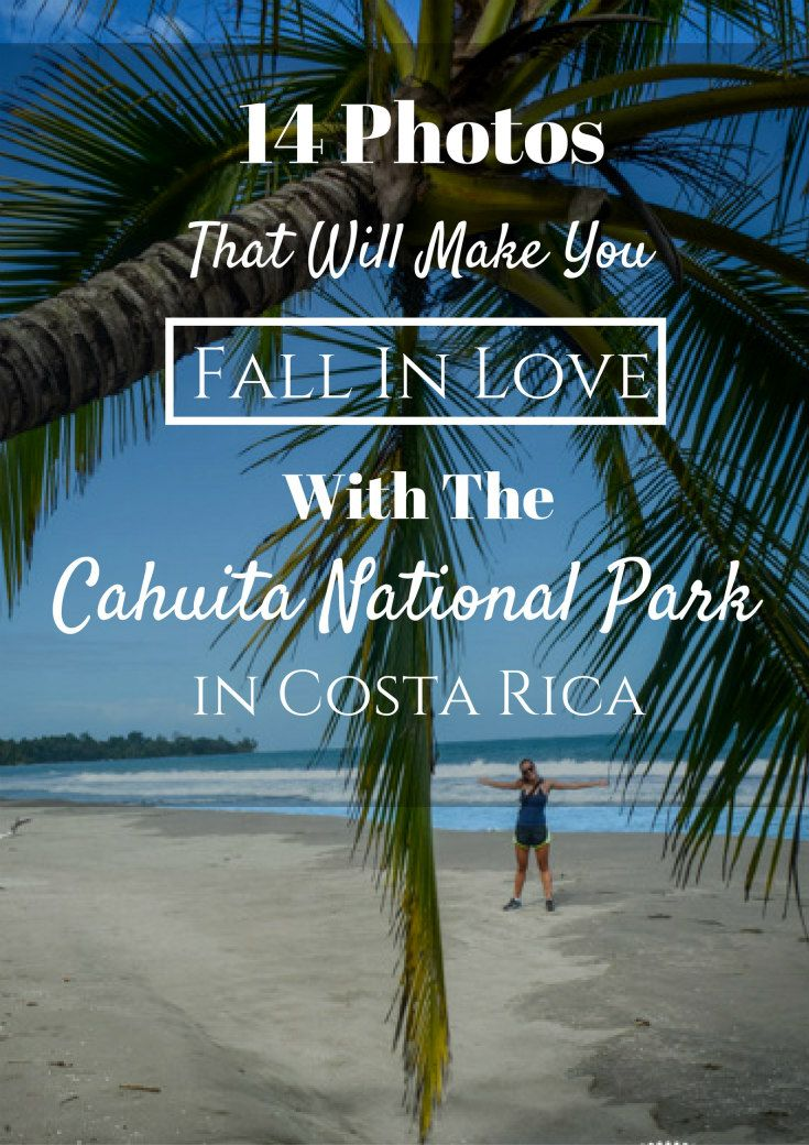 best ecocostarica images travel  why you absolutely must cahuita national park
