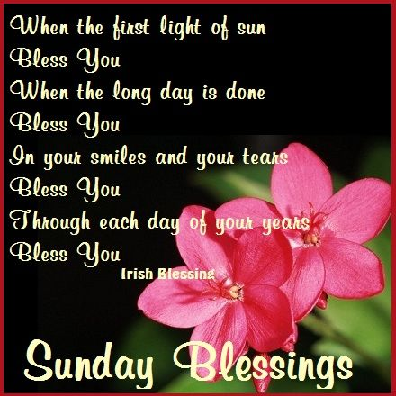 """Sunday blessing - """"Among the things you can give and still keep are your word, a smile, and a grateful heart."""" ~Zig Ziglar"""