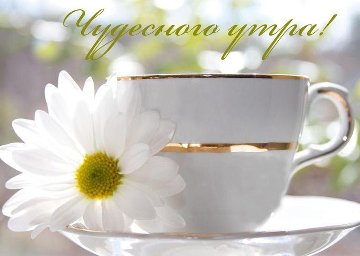 Открытки с чудесным утром, днем