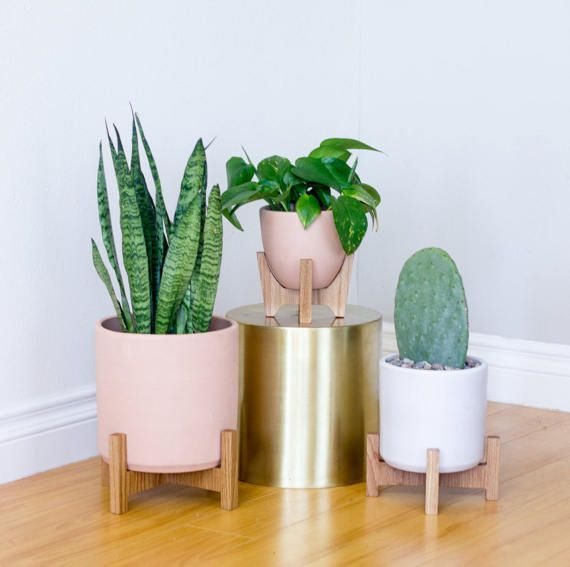 NEW! These mini stands are made with American hardwood and custom made ceramic pots. The bell-shaped ceramic planter fits snugly inside the sculpted stand. Sculptural elements of the stand combined with the petite size make this Tiny Tabletop planter stand the perfect mid-century modern home decor accessory for any room in your home or apartment, or the ideal housewarming gift. We designed these tiny planter stands with home or corporate offices in mind, as we wanted to bring modern…