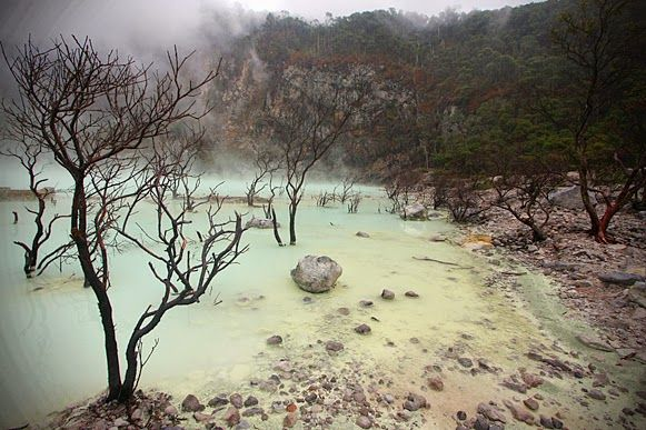The story of Kawah Putih began in the 10th century where there was a terrific explosion by Patuha. After this eruption, many people assume that this location is haunted region because each bird flew past the region will die.