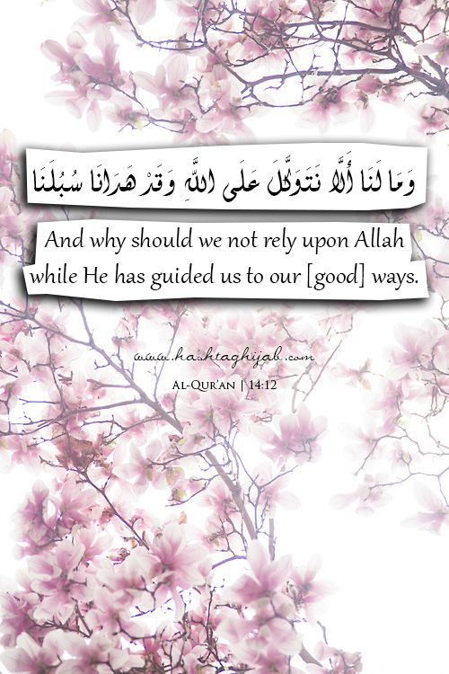 Islamic Daily: Rely