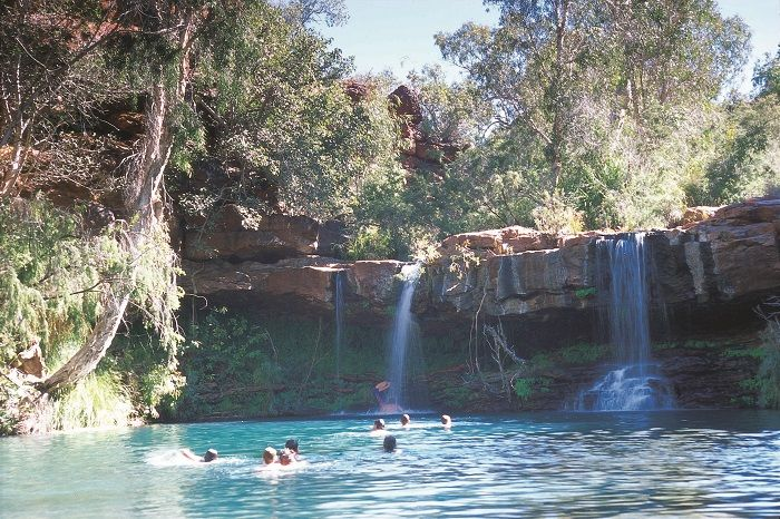 Swimming at the Fern Pool in Dales Gorge, Karijini National Park
