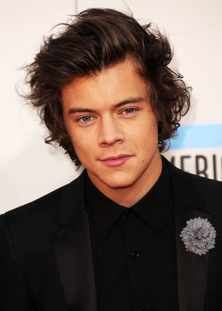 harry styles 2014 | from harry styles 2014 fashion hairstyles 2014 harry styles 2014 ...