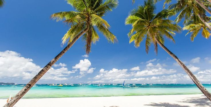 Boracay Hotel + EXPRESS Transfers + Island Hopping with Lunch