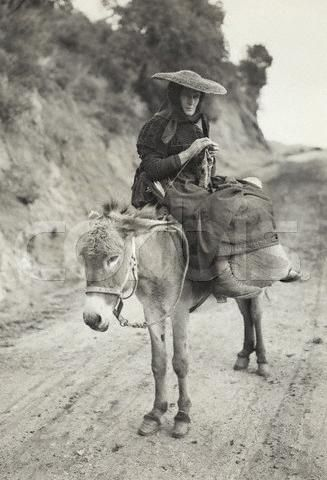 Ajaccio, Corsica, France --- Ajaccio, Corsica, France: Peasant of Ajaccio, Corsica. The woman, seated on donkey, is knitting. --- Image by ? Bettmann/CORBIS