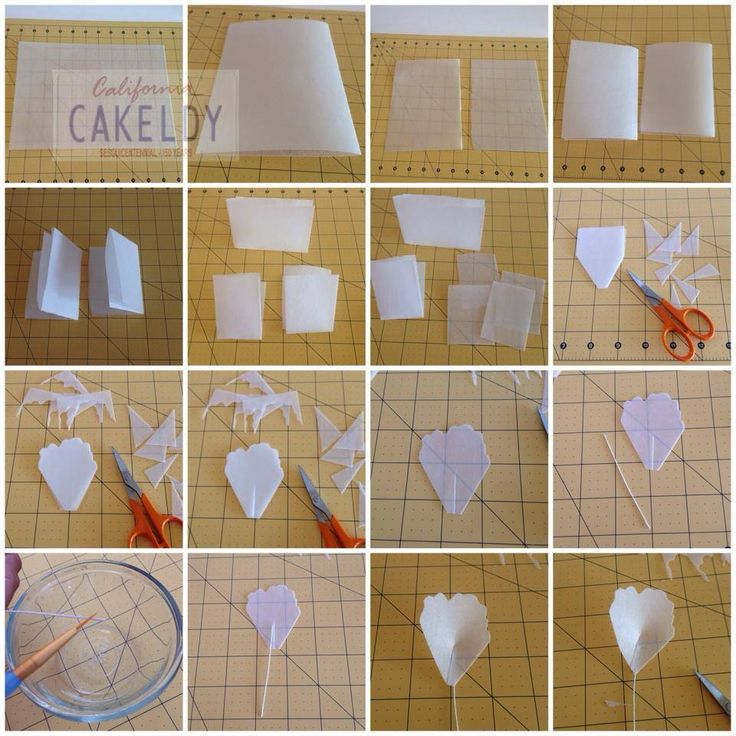Peony Wafer Paper Tutorial - Part 2 / 2