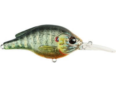 Lure for Fishing