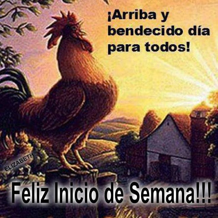 Good Morning In Puerto Rican Spanish : Best images about bendecida semana on pinterest posts