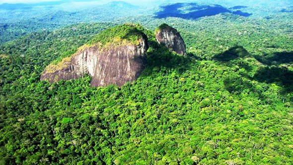 Parque Nacional Montanhas de Tumucumaque - Macapá/Ap