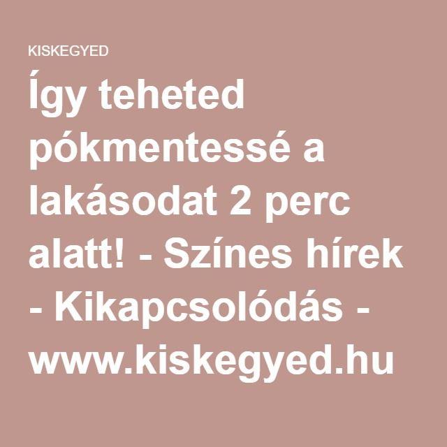 Így teheted pókmentessé a lakásodat 2 perc alatt! - Színes hírek - Kikapcsolódás - www.kiskegyed.hu