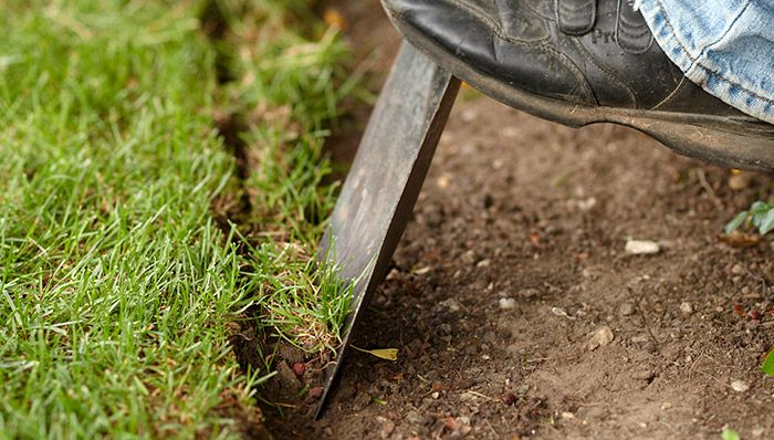 Edging a bed using a flat shovel/lawn edger. lowes.com