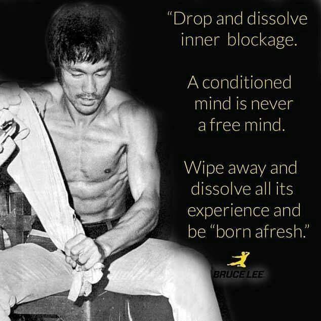������ from @bruceleecollages - Source: brucelee.com #brucelee #kungfu #Bruceleecollages #judo #china #jeetkunedo #karate #jkd #jujitsu #hollywood #wingchun #mcgregor #zen #taekwondo #hongkong #training #boxing #kickboxing #gym #fitness #beijing #quotesaboutlife #martialarts #mma #enterthedragon #sanfrancisco #philosophy #bodybuilding #ufc#photography http://quotags.net/ipost/1643935065720593305/?code=BbQbjt6FZuZ