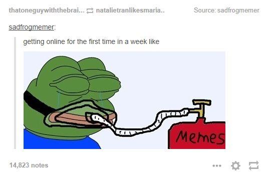 Feels Bad Man / Sad Frog | Know Your Meme