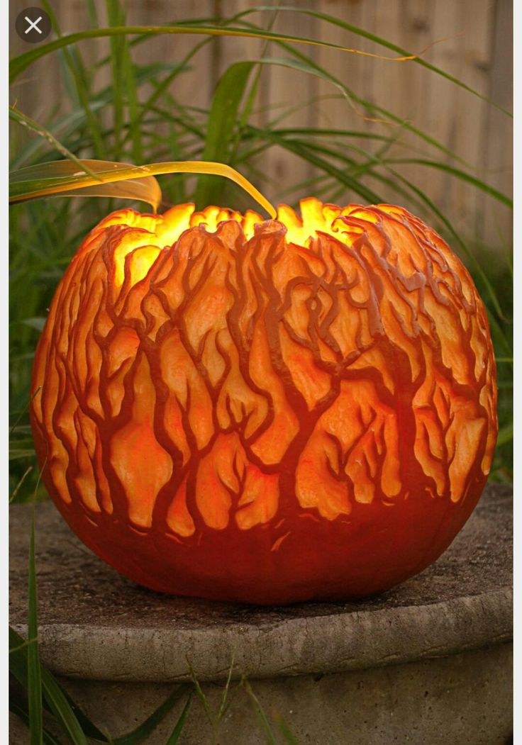 Glowing Forest Pumpkin The Coolest Halloween