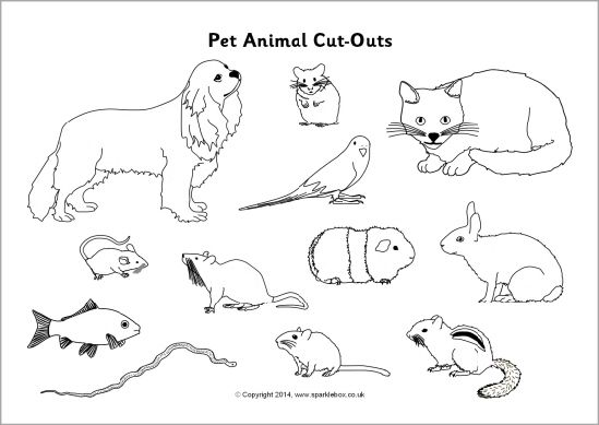 Pet animal cut-outs - black and white (SB10306) - SparkleBox