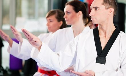 Instructors with years of experience train the clients in traditional Taekwondo techniques