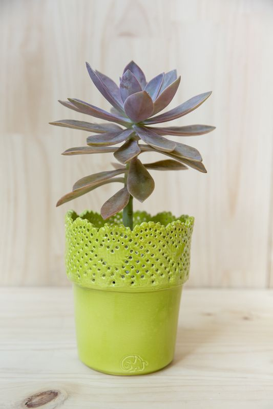 #love #handmade #planter #ceramic #succulents Shop our products at www.habibiplantitas.com