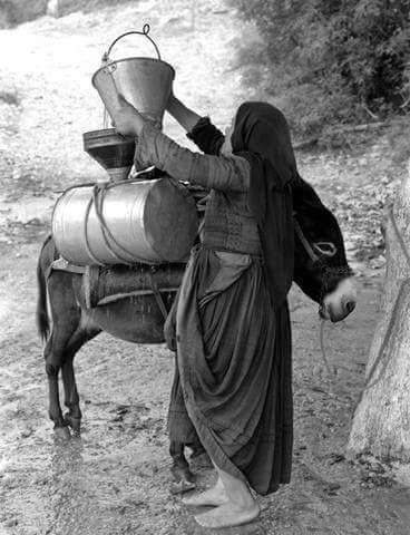 Γεμίζοντας νερό στη Λευκάδα το 1956..._Φωτογράφος Τάκης Τλούπας