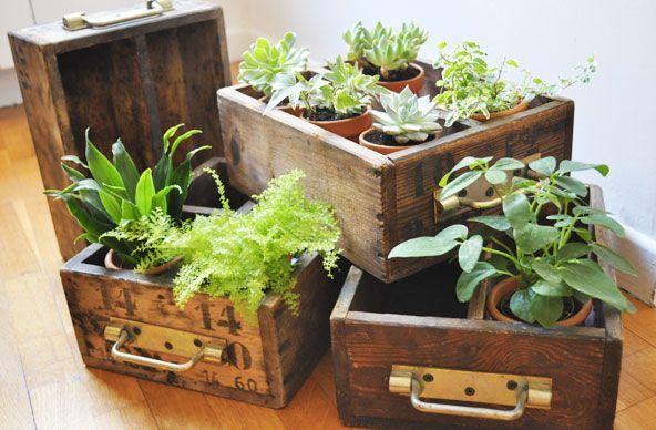 Avec des vieux tiroirs – #Bacafleurspourl'ete #Havredepaixjardin #Jardinierdébu…