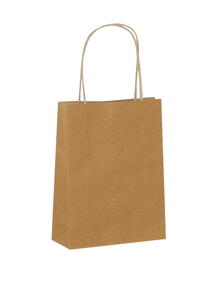 Brown Carrier Bag Twisted Handle - Plain Brown