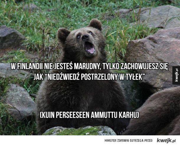 Ciekawe i zabawne fińskie powiedzonka