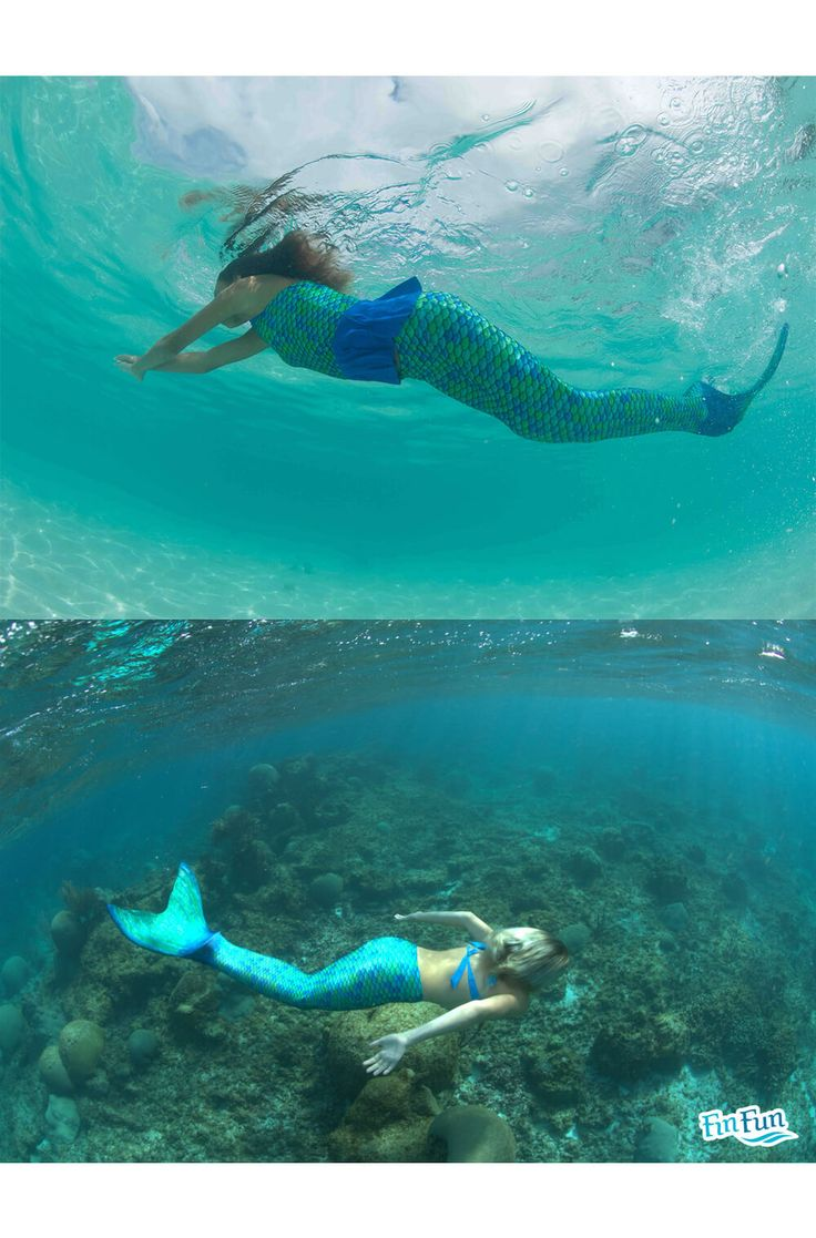 17 Best Images About Fin Fun Mermaid Tails On Pinterest