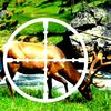 A Deer Target  You Are The Best Hunter  eduardo forero by Luxy Mag