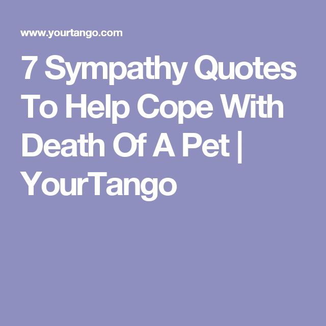 7 Sympathy Quotes To Help Cope With Death Of A Pet | YourTango