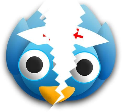 Uh Oh !!! Broken Chirp :(