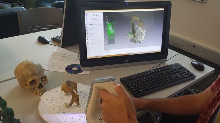 Interaktywne Muzeum Czaszki 3D 02