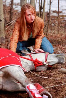Heartland Amy calming down a horse after an accident on episode 1 season 3