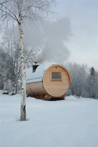 sauna.   The Real Deal!!  Bring out the birch twigs.