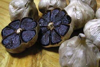 L'aglio è uno di quei rimedi utilizzato per qualsiasi evenienza dalle nostre nonne. Che evidentemente avevano sempre ragione. Benché abituato alla varietà
