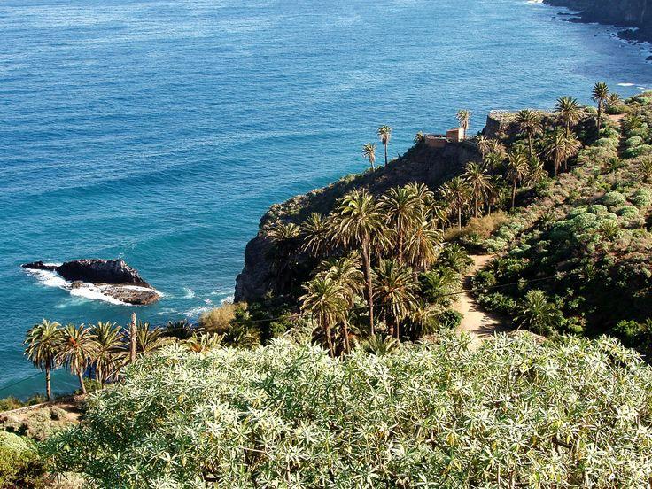 Coastal Path Los Realejos | Flickr - Photo Sharing!