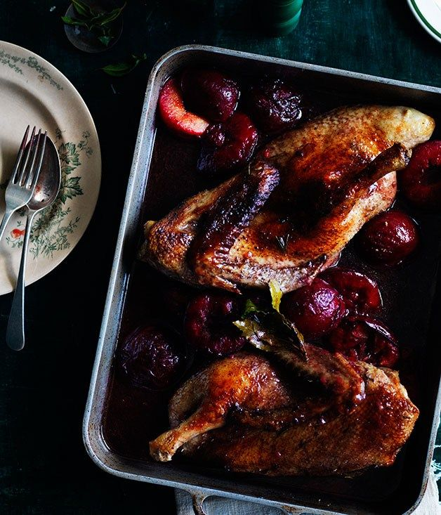 Duck roasted in Lambrusco with blood plums and bay recipe - Gourmet Traveller