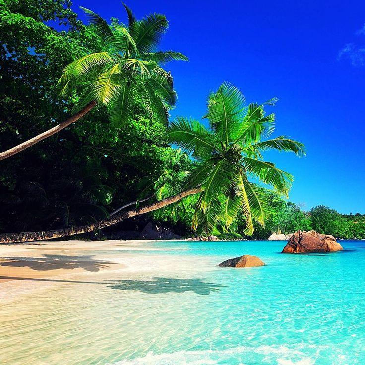 так пляж океан картинки на телефон собственной ванной