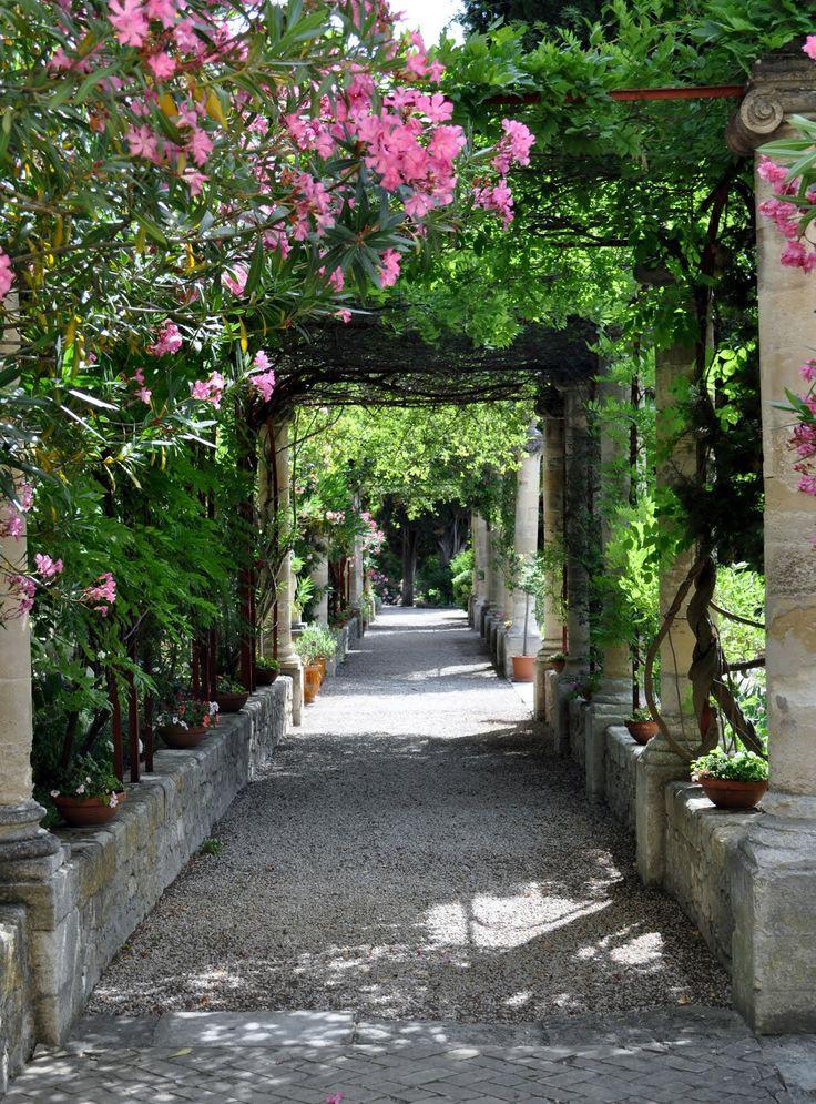 The Pergola In The Saint André Abbey Garden   Villeneuve Lès Avignon