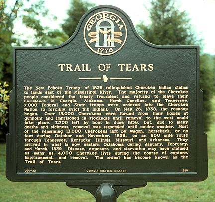 Trail of Tears.... was President Andrew Jackson's genocide plan. U.S. attempt at an American Indian holocaust. Previously, the government had already tried to eradicate the American buffalo, the Indians main food source.    The government was also able to steal more land from the Indians with this horrific event.
