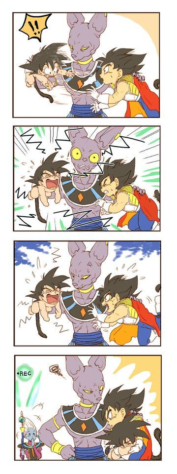 Baby Goku, Kid Vegeta and Bills. so cute how they portray vegeta all worried that goku will anger bills. then hodling/sheilding/protectivly holding him lol