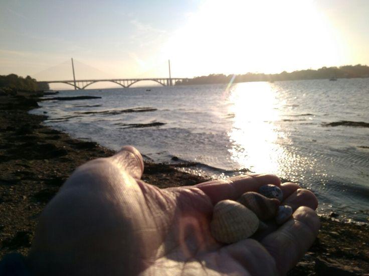 Non j'ai juste voulu voir la mer j'ai ramassé des coquillages. Et ensuite il a fallu bouger chercher un truc à manger.