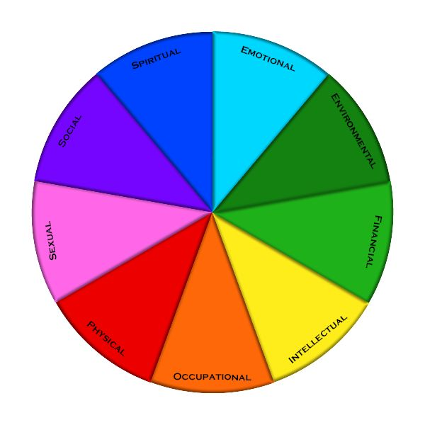 take this simple wellness assessment from the Northern Illinois University to determine your wellness wheel! #wellnessmoments